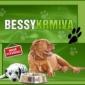 Bessy-krmiva's obrázek