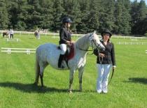 Welsh pony sekce B